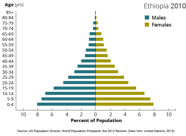 2010 demographics ethiopia