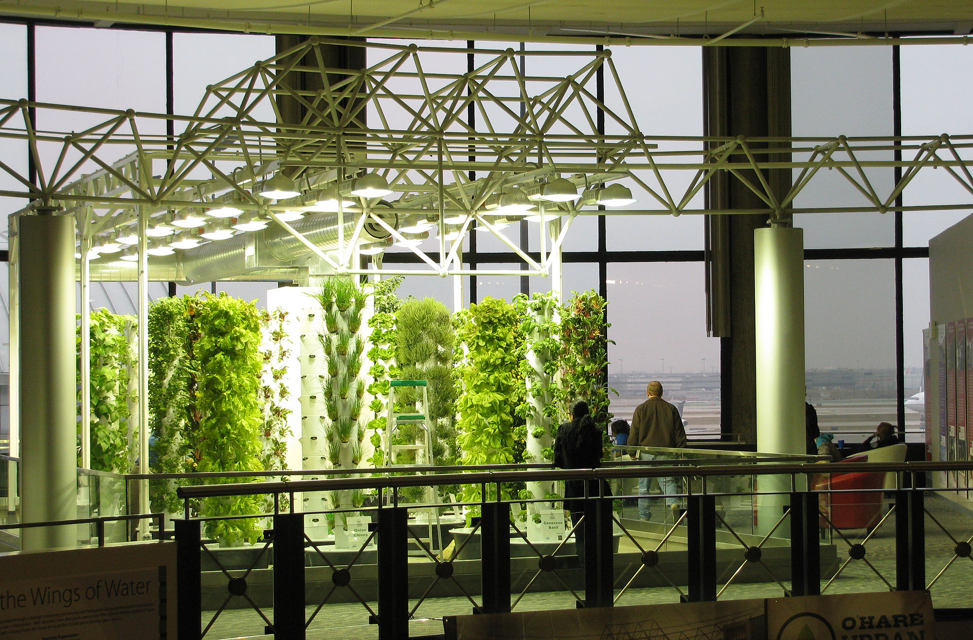 Aeroponic gardening provides restaurants with fresh produce at O'Hare Airport