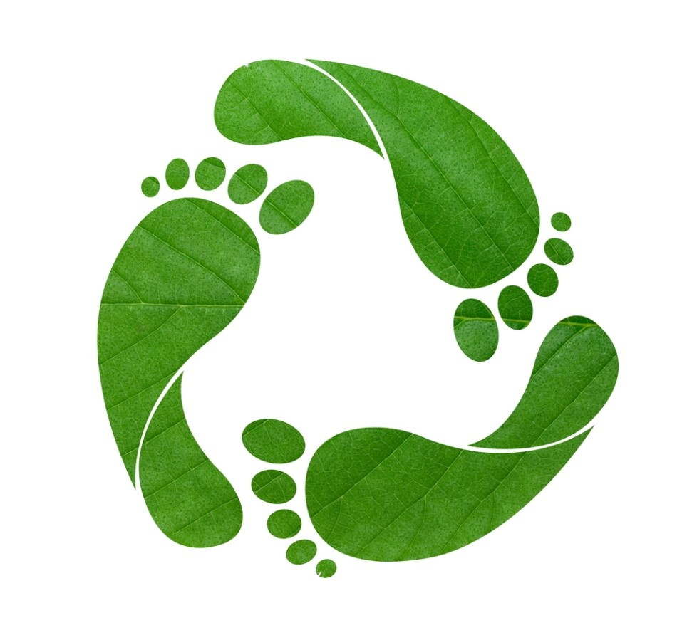 What is an ecological footprint? | Population Education