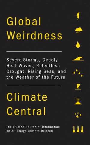 Cover photo of the book Global Weirdness