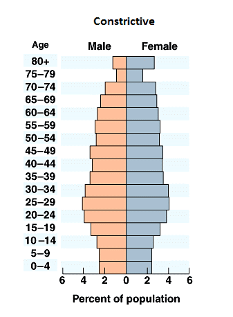 Image result for Expansive population pyramid