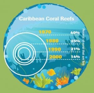 Graphic of caribbean coral reef size change from 1970 to 2000
