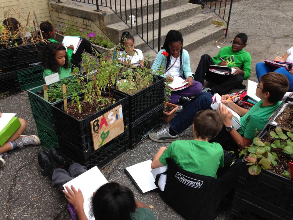 The Benefits Of Building An Urban Garden At Your School Population Education