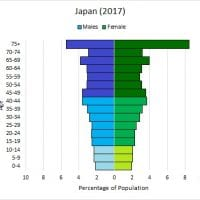 Diminishing age structure diagram – Japan