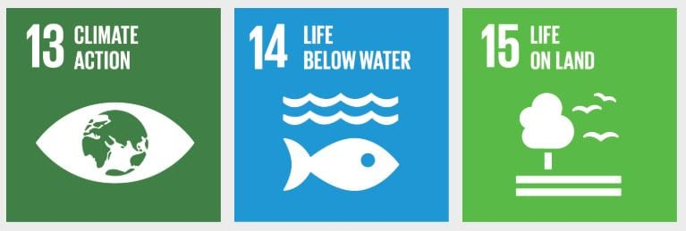 Sustainable Development Goals 13, 14 and 15