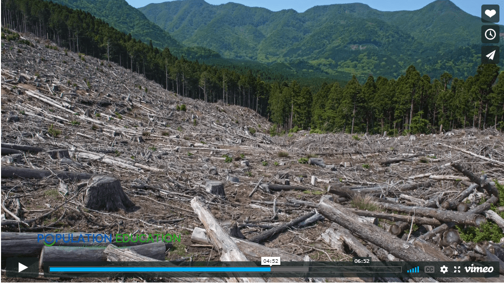 """Screenshot of video lesson plan """"For the Common Good"""" using deforestation as an example of tragedy of the commons"""