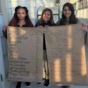 Students display list of seedling codes