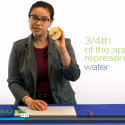 """Screenshot of video lesson plan """"Earth: The Apple of Our Eye"""" using an apple to demonstrate the limited farmland available on Earth"""