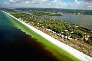 Red tide off coast of Little Gasparilla Island, FL