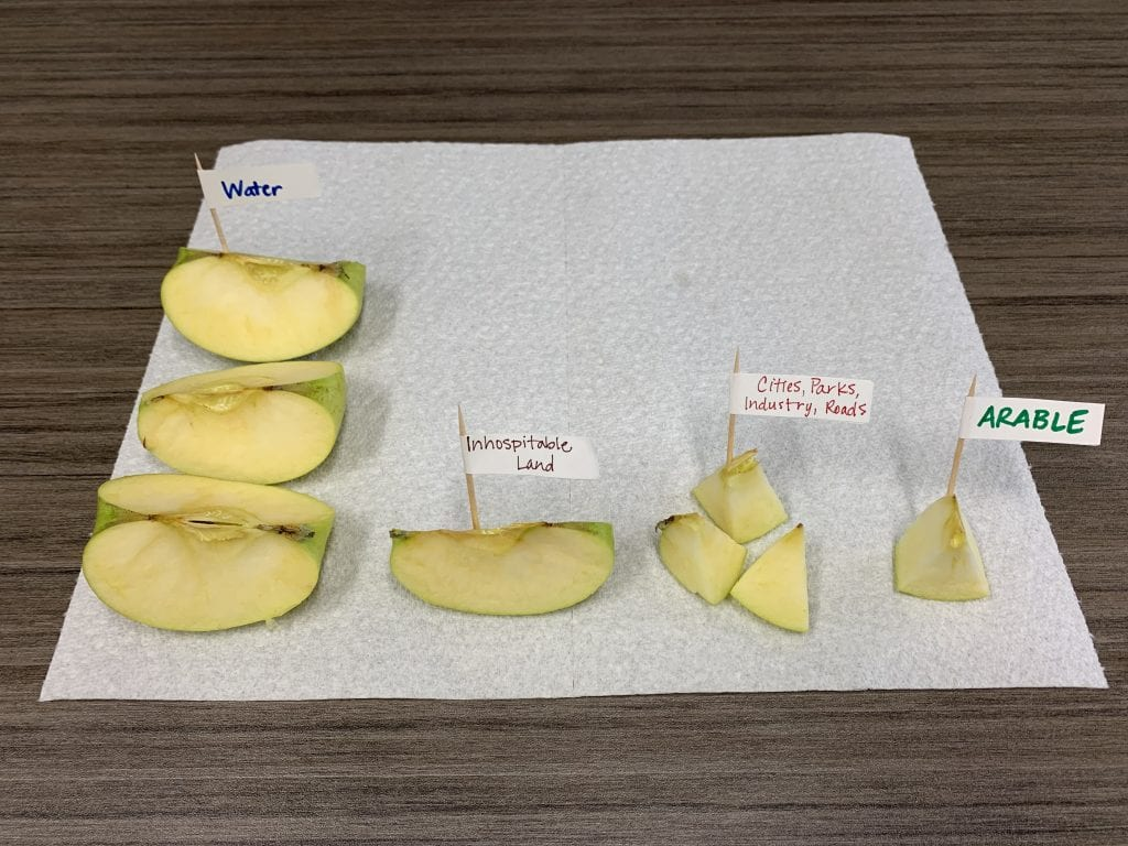 Cut apple modeling Earth's area as water, inhospitable land, cities/parks/roads/industry, and arable land