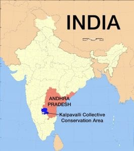 Map of India showing the Kalpavalli Collective Conservation Area within Andhra Pradesh
