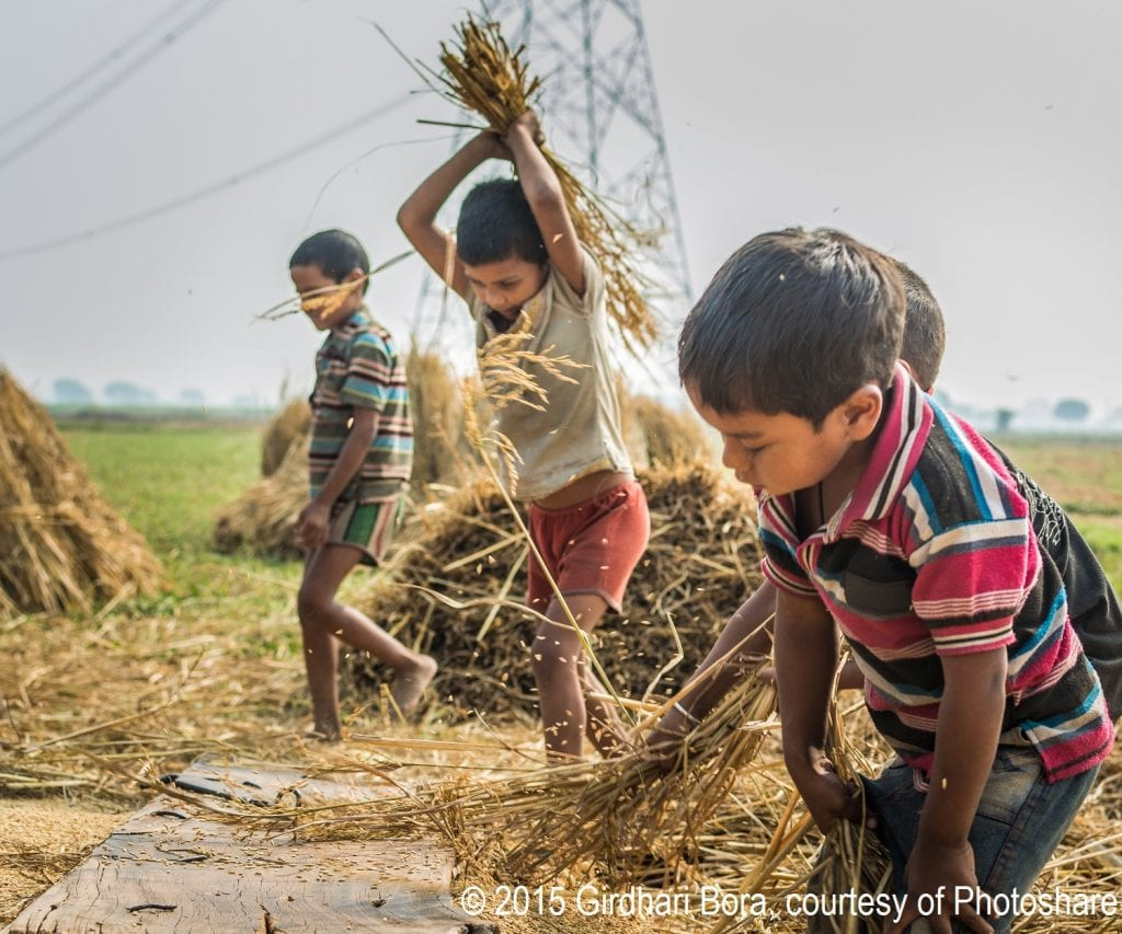 Children working on farms is still a critical component of many economies.