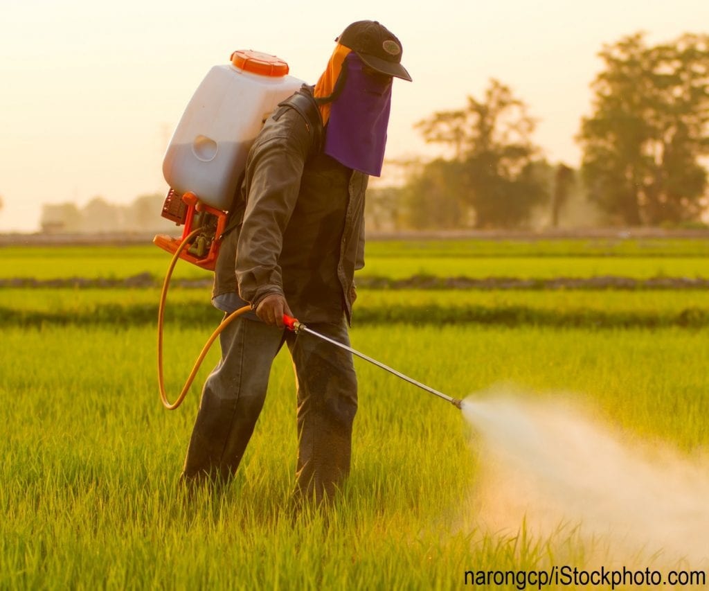 A farmer spraying pesticides in Thailand.