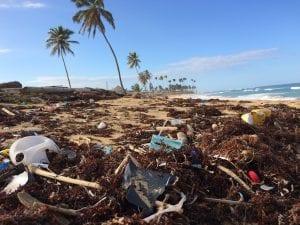 Visible Human Impact on Pristine Beach