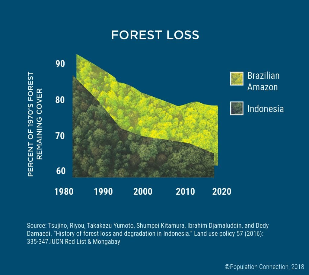 Forest loss in Indonesia and the Brazilian Amazon. Graph shows percentage of 1970s forest remaining through 2020