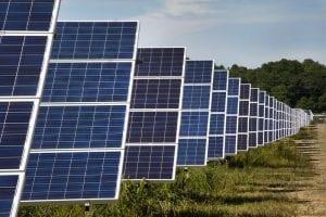 Rows of solar panels at a solar farm in Long Island, NY