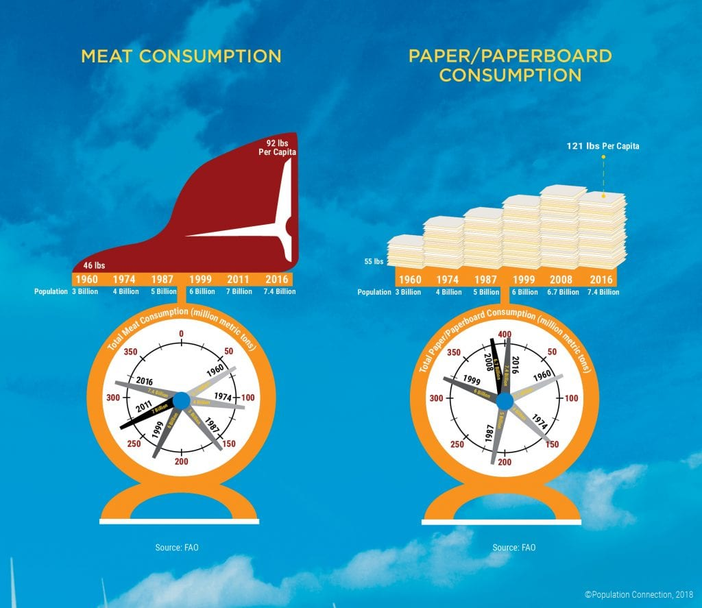 Infographic on historic consumption levels of meat and paper products. Graphs show per capita and total consumption
