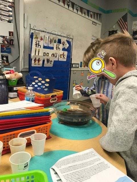 Earth Day Lessons for Kindergarten