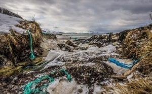 Beach view of marine pollution