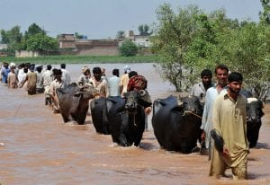 Displaced people cross muddy waters while fleeing Sindh and being streamed into Balochistan