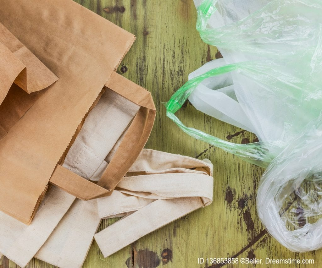 The great bag debate - paper bags versus plastic bags