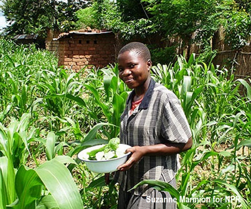 Teenage girl in Malawi holding pumpkin leaves to make lunch