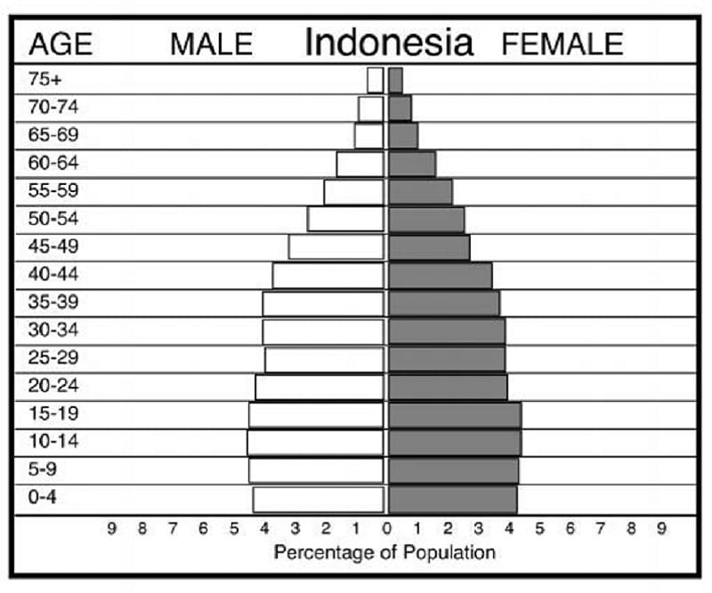 Population pyramid for Indonesia is an example of a population pyramid