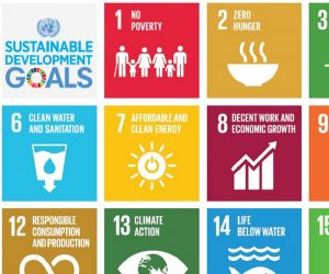 Sustainable Development Goals logo and partial list of goals