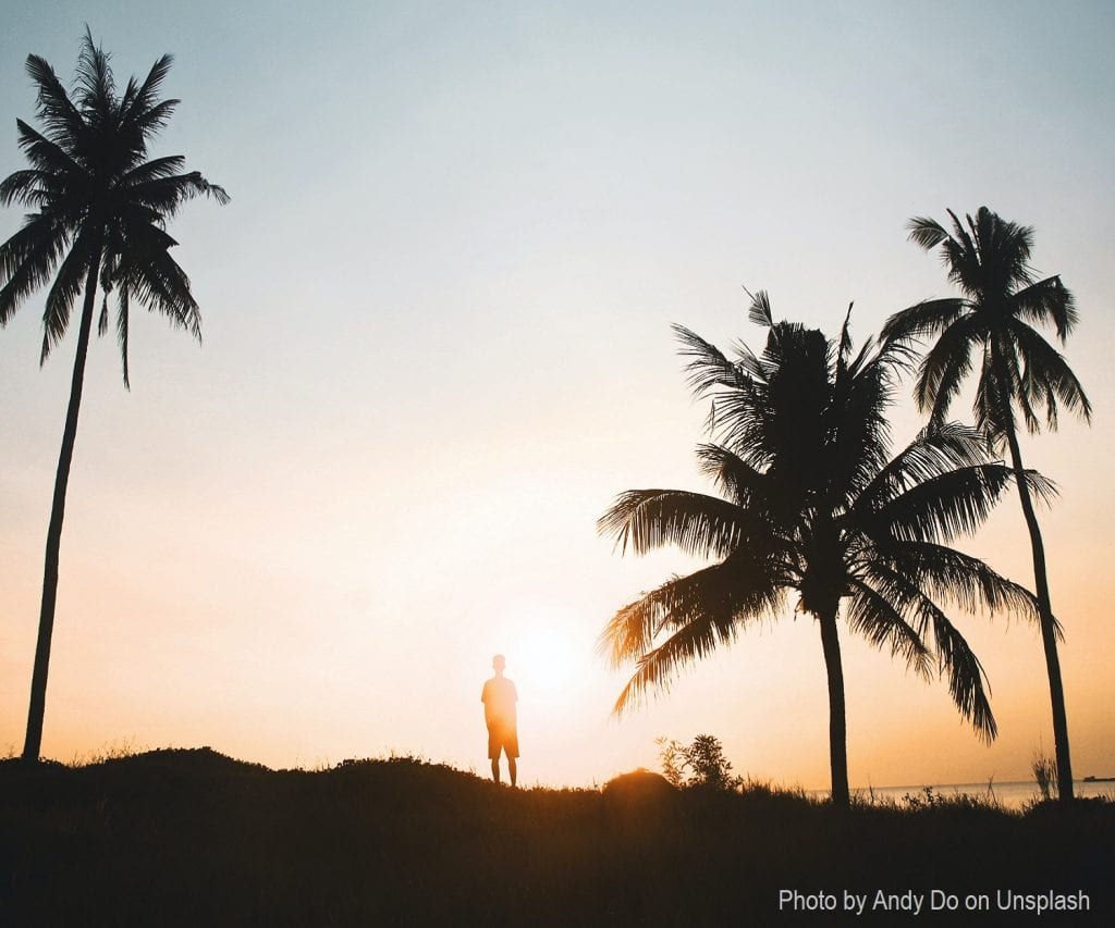 Single person standing with palm trees