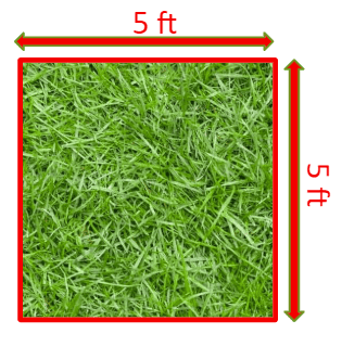 It takes 25 square feet of grass to provide oxygen for one person's daily needs