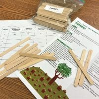 "The lesson plan, Timber, sits on a desk, alongside lesson materials. The materials include several loose popsicle sticks and a plastic bag labeled ""forest"" that is filled with popsicle sticks."