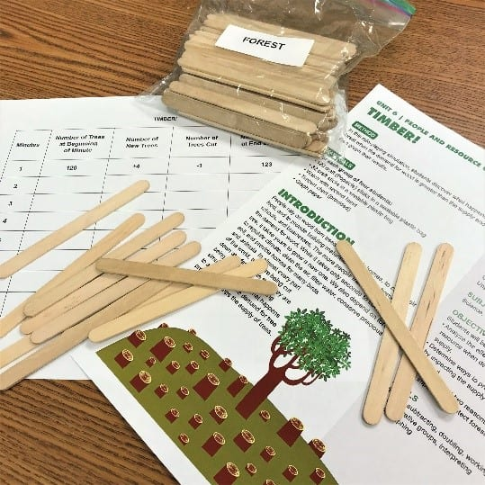 """The lesson plan, Timber, sits on a desk, alongside lesson materials. The materials include several loose popsicle sticks and a plastic bag labeled """"forest"""" that is filled with popsicle sticks."""